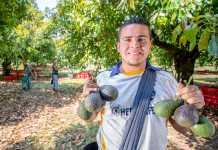 Siete municipios de México libres de barrenadores de hueso de aguacate
