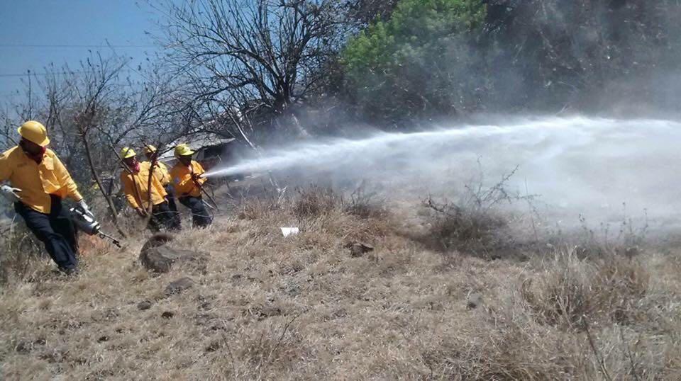 Registra Michoacán 208 incendios forestales en lo que va del año