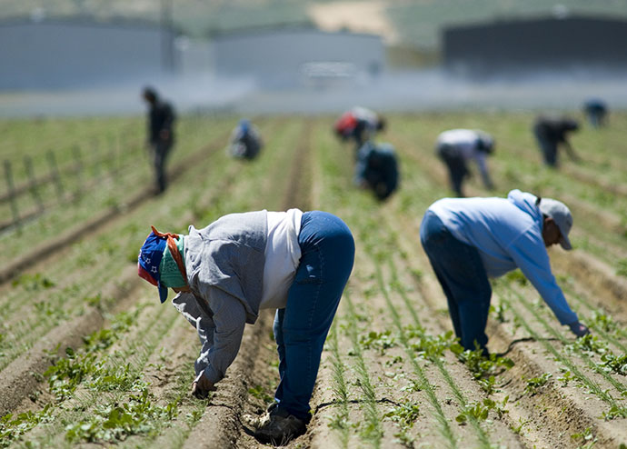 Buscan productores vincular proyectos exitosos con programa de impacto social