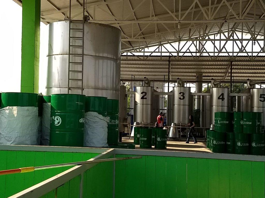 Producirá Michoacán aceite esencial
