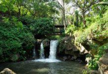 Barranca del Cupatitzio, un lugar mágico de Michoacán