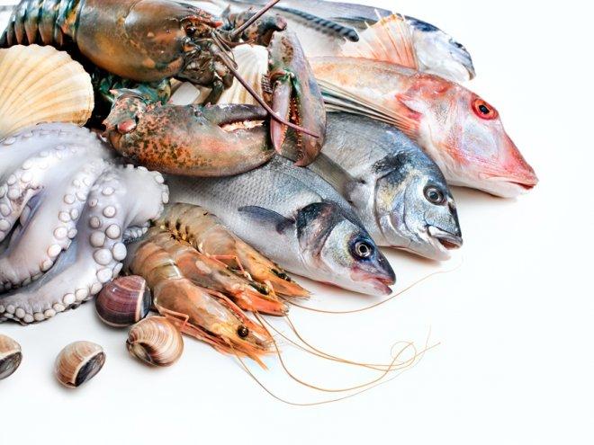 Compesca pretende colocar 20 toneladas de pescados y mariscos