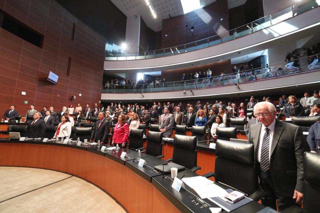 Elige Senado a Rosario Piedra Ibarra como nueva titular de la CNDH