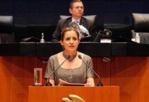 Ley de Publicidad Oficial deberá garantizar la libertad de expresión: Martha Tagle