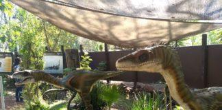 Expondrán nuevo dinosaurio en Museo de Historia Natural