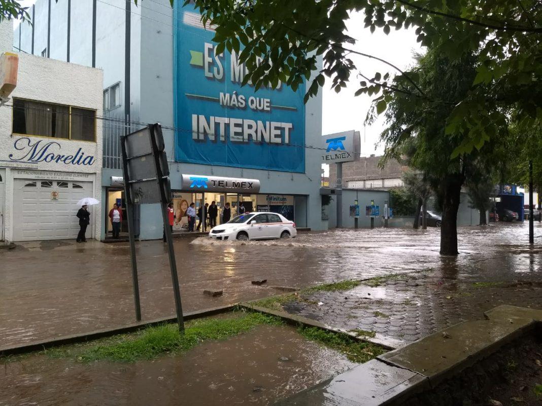 Por lluvia, cae árbol sobre café de avenida Camelinas