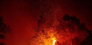 Mexicanos salvan a residentes de incendio en EU