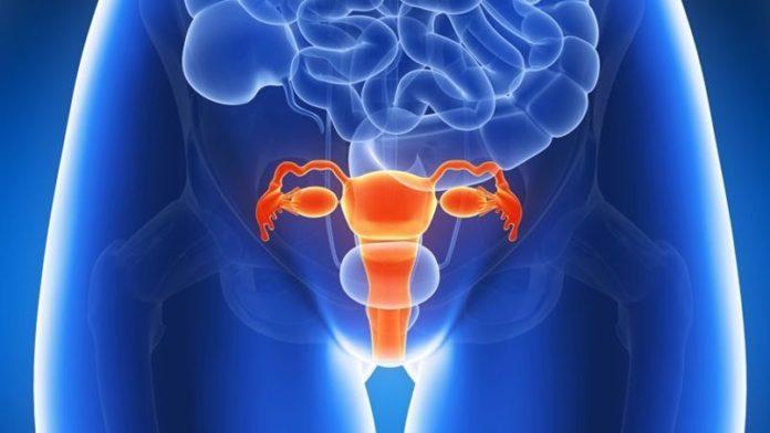 Fallecen 4 mil mujeres al año por cáncer de cuello de útero
