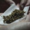 Buscan legalizar la marihuana recreativa