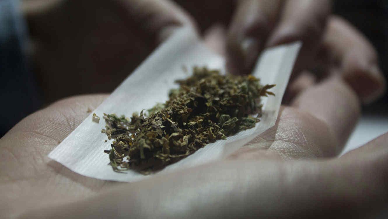 Propone Senado aumentar gramos permitidos de marihuana