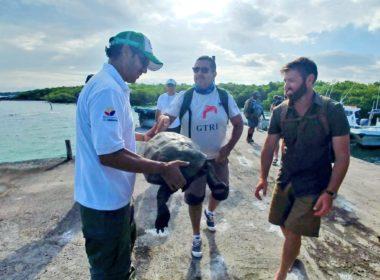 Localizan tortuga que se creía extinta desde hace 100 años