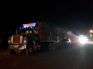 Denuncian supuesta tala ilegal