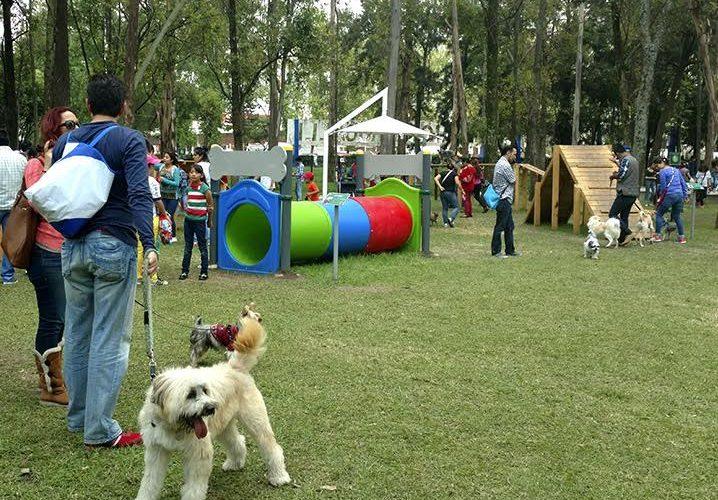 FUCIDIM buscará crear parques caninos en Morelia