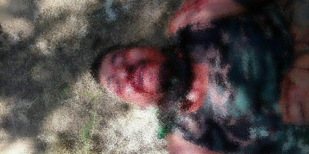 Asesinan a supuesto Viagra cobra cuotas a aguacateros de Michoacán