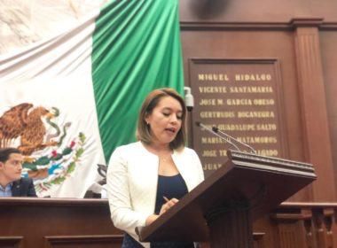 Llama Yarabí Ávila a reconsiderar cierre de equinoterapia en la SSP