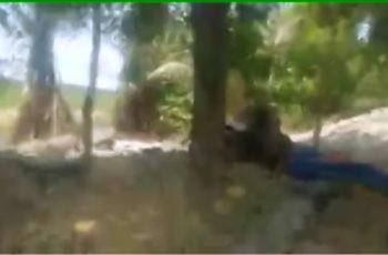 Graban video de enfrentamiento entre Viagras y CJNG