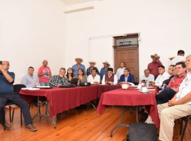 A revisión de diputados de Morena, recursos invertidos en sector rural de Michoacán