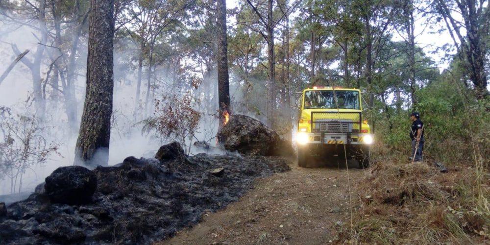 Atienden incendio en el Parque Nacional de Uruapan
