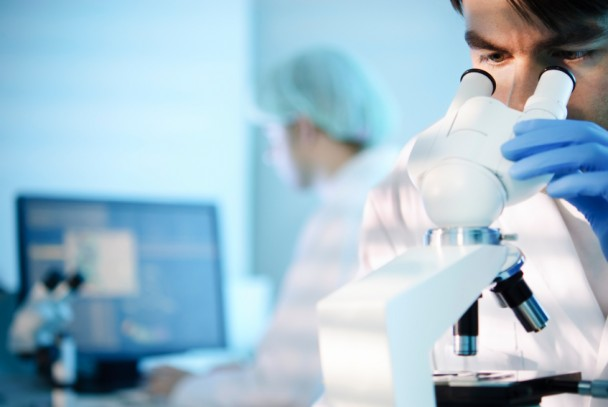 Crean dispositivo que detecta bacterias en alimentos