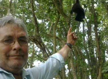 Asesinan a ecologista en México