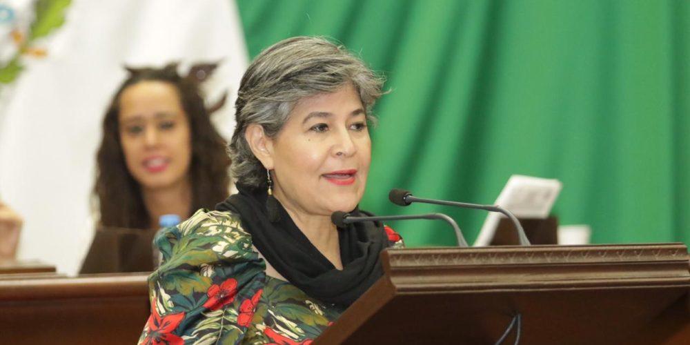 Lucila Martínez se apropia del trabajo realizado por la Comisión de Desarrollo Sustentable: Mayela Salas