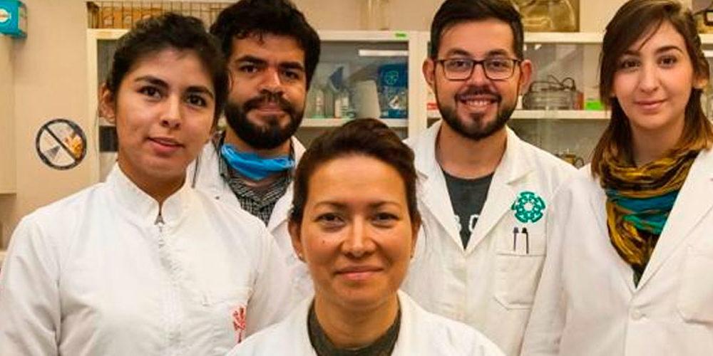 Investigadores del IPN logran eliminar el papiloma humano
