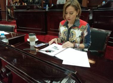 Propone Yarabí Ávila ampliar agravantes en delito de abuso sexual