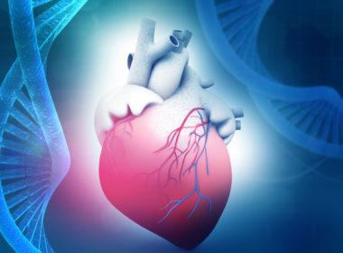 Llaman a reducir factores de riego de enfermedades del corazón