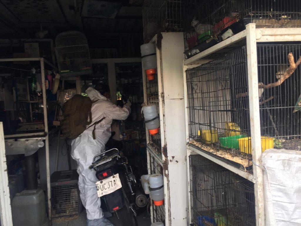 Por posible maltrato animal, asegura FGE veterinaria