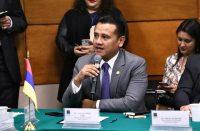 Insistirá Morena en la reducción al financiamiento de partidos: Torres Piña