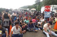Migrantes organizarían portazo para ingresar a México
