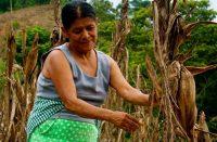 Mujeres, las más castigadas por la 4T: PRI