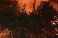 Reportan incendio en Parque Nacional de Uruapan