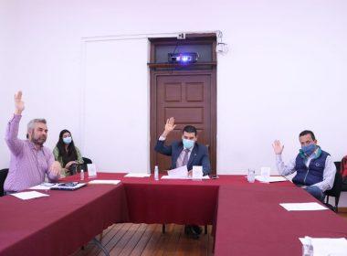 sesiones parlamentarias virtuales