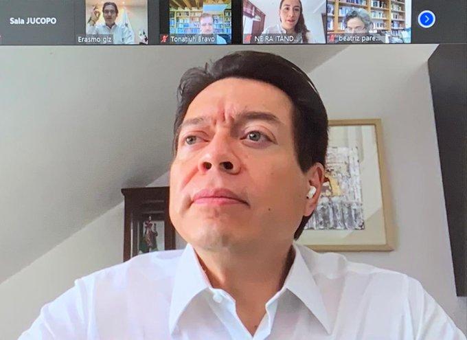Gana Mario Delgado dirigencia