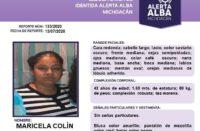 Activan alerta alba para localizar a madre y a sus 3 hijos en Michoacán