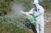 104 colonias de Morelia han sido fumigadas para evitar casos de dengue