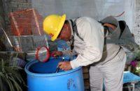 SSM regresará a fumigaciones contra dengue en Morelia