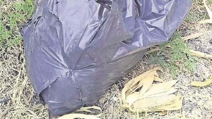 Localizan cadáver en bolsas de plástico