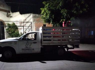 Hasta el momento, 23 casos probables de dengue en Morelia
