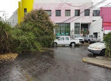 Encharcamientos caída de árbol lluvia