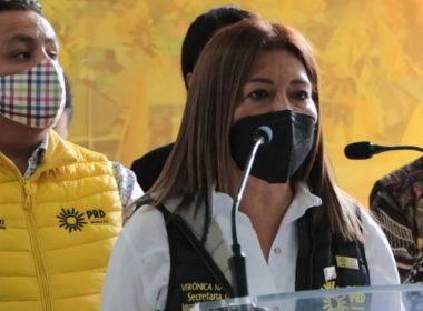 Mujeres perredistas juntarán firmas para respaldar a Silvano