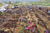 """Arranca el programa de reforestación """"Morelia Brilla�"""