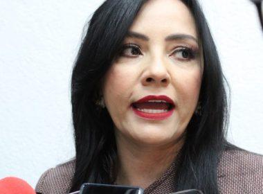 Visita de AMLO será en beneficio de Michoacán: diputada